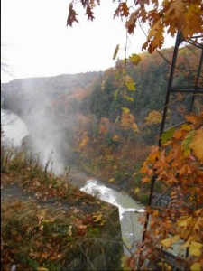 a view of the larger waterfalls along the gorge trail